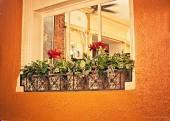 Valentinos Restaurant Gallery